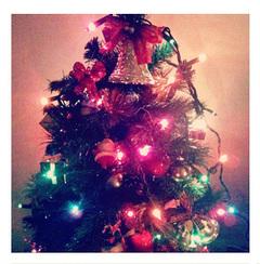 2011christmas2.jpg